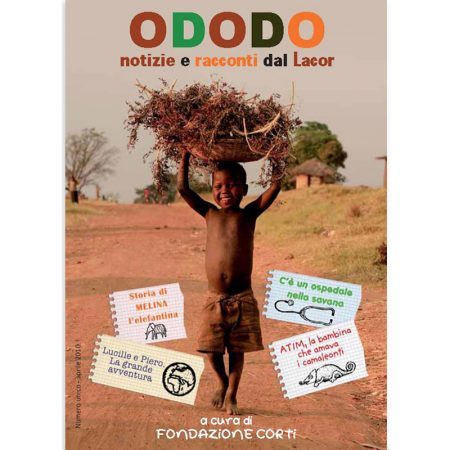 ODODO800X800